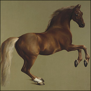 Whistlejacket, about 1762. © The National Gallery, London