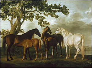 Mares and Foals, 1763-65 © Tate 2005