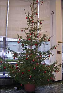 Christmas tree at 'Stage Door' BBC Television Centre