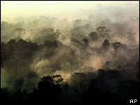Fires burn in the Amazon rainforest (file photo)