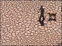 Cracked reservoir bed in Alcora, eastern Spain