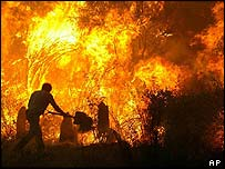 Forest fire in Boticas, Portugal, July 2004
