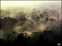 Nubes de gases t�xicos