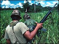 Bolivian soldier searches for coca