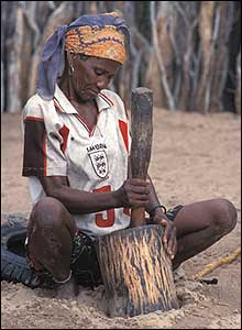 Woman grinding melon seeds for soup in the central Kalahari game reserve in Botswana. Copyright: Survival International
