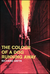 The Colour of a Dog Running Away book cover