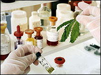 A laboratory analysis of GW Pharmaceutical's cannabis samples