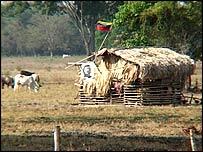 Venezuelan farm