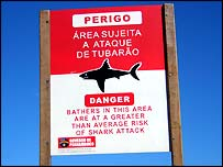 shark warning sign