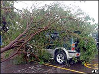 A car crushed by a tree felled by Hurricane Ivan