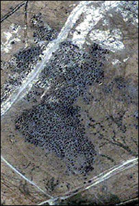 Satellite image showing holes where sites have been dug up [photo courtesy Digital Globe]