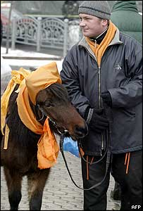 A Yushchenko supporter with a pony, both in party colours