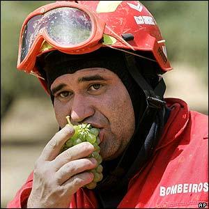 Firefighter in Santarem, Portugal