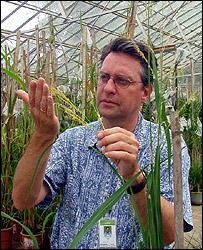 Professor Rod Wing, PA