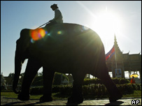 A Cambodian mahout and his elephant