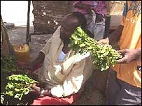 Khat dealers