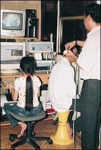 The endoscope in action