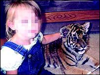 Picture of a girl petting a tiger appeared on website - pic courtesy of IFAW