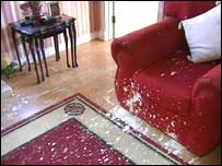 The attack at Tudor Vale caused damage in the living room and hall