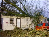 Mobile home hit by tree