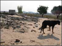 Ruins in Porta Farm