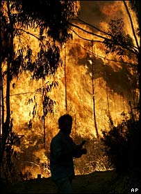 Villager turns away from an approaching forest fire, Pampilhosa da Serra, northern Portugal