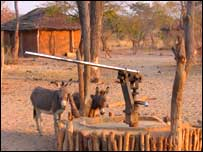 Village well and donkeys