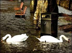 Flooded park in Callander, Stirlingshire