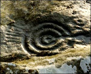 Example of one of the rock art carvings
