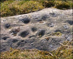 Example of newly-discovered rock art at Snook Bank, Northumberland
