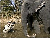 Steve Bloom, Kanha, India ©stevebloom.com