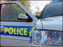 Police car door, generic