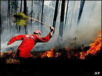 Firefighters battle forest fires in Portugal