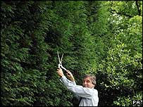 Jim Fitzpatrick, Minister at the Office of the Deputy PM, poses with a hedge