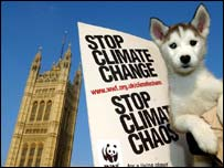 Husky puppy on London climate demo   PA