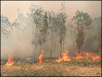 Burning peatland, RGS