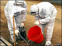 Workers disinfect large areas in the New Territories during a hunt for killer red ants in Hong Kong 27 January 2005