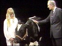 Peter Snow with Dolly the cow