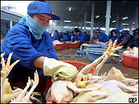 A Vietnamese worker cleans chickens at Long Bien market in Hanoi, 31 Jan