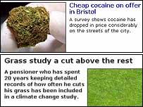 Screen grabs of articles