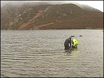 The gwyniad eggs are then released into Llyn Arenig