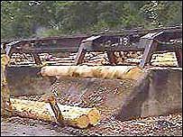 A sawmill (generic)