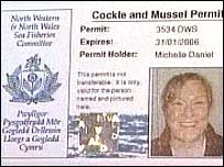 Michelle Daniel's cockling licence