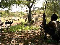Herder in Ethiopia