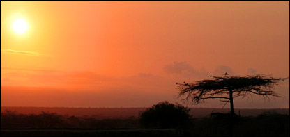 Sunrise over Tsavo (BBC)