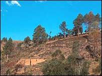 A hill deforested by slash and burn farming in Madagascar