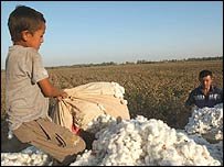 A boy hauls cotton in Uzbekistan. Copyright: Thomas Grabka