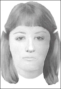 E-fit of bogus social worker