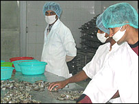 Workers at Mr Salam's factory