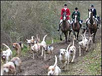 Surrey Union hunt